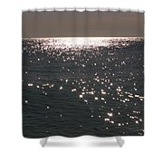 Shimmer Shower Curtain