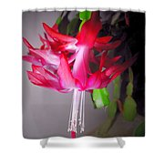 Shimmering Beauty Shower Curtain