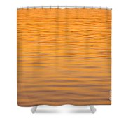 Shimmering Surface Shower Curtain
