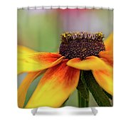 Shine For Me Shower Curtain