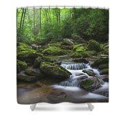 Shining Creek Shower Curtain