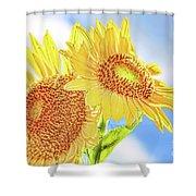 Shining Sunflowers Shower Curtain