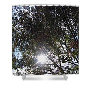 Shinning Sun Shower Curtain
