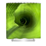 Shiny Green Plant Shower Curtain