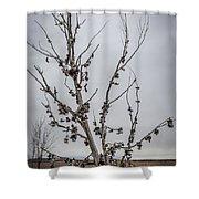 Shoe Tree Shower Curtain