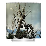 Shoe Tree Shower Curtain