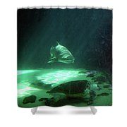 Shopping For Dinner Shower Curtain