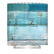 Shore And Moonrise Shower Curtain