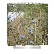 Shore Flowers Shower Curtain
