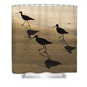 Shorebird Silhouettes Shower Curtain