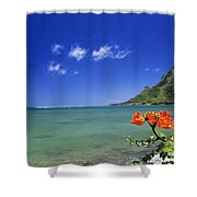Shorline With Flower Shower Curtain