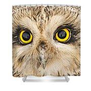 Short-eared Owl Face Shower Curtain