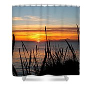 Short Winter Day Shower Curtain