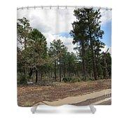 Show Low Landscape Shower Curtain