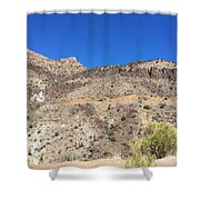 Show Low Shower Curtain