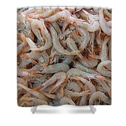 Shrimp Mess Shower Curtain