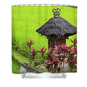 Shrine In Rice Field Shower Curtain
