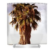 Shrouded In The Past 1 Shower Curtain