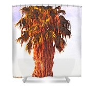 Shrouded In The Past 2 Shower Curtain