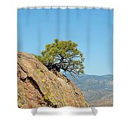 Shrub And Rock At Canon City Shower Curtain