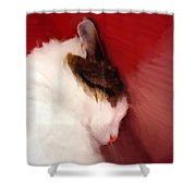 Shutting Out The World Shower Curtain