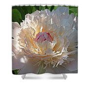Shy Beauty Shower Curtain
