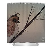 Shy Bird Shower Curtain by Ginny Youngblood