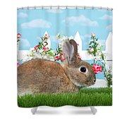 Shy Brown Dwarf Bunny Portrait Shower Curtain