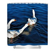 Shy But Lovely Shower Curtain