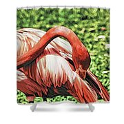 Shy Flamingo Shower Curtain