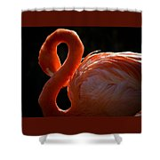 Shy Pose Shower Curtain