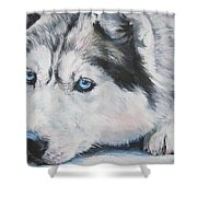 Siberian Husky Up Close Shower Curtain