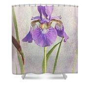 Siberian Iris Shower Curtain