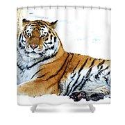 Siberian Tiger Amur Tiger Shower Curtain