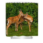 Sibling Love Shower Curtain