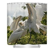Sibling Squabble Shower Curtain by Christopher Holmes