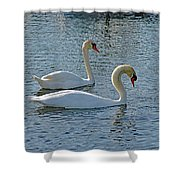 Side By Side For Life  Shower Curtain