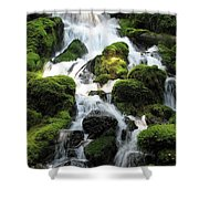 Side Of Clearwater Falls Shower Curtain