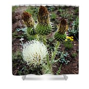 Side Thistle  Shower Curtain