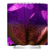 Side View Shower Curtain