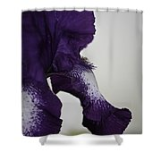 Side View Purple And White Iris Shower Curtain