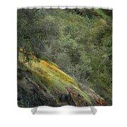 Sierra Poppies Shower Curtain