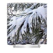 Sierra Winter Shower Curtain