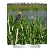 Sight Seer Shower Curtain