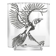 Sigma Eagle Shower Curtain