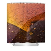 Signs-3 Shower Curtain