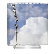 Signs Of Spring 2 Shower Curtain