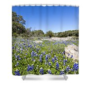 Signs Of Spring In Texas Shower Curtain