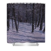 Silence Shower Curtain