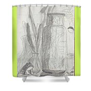 Silent Frog Shower Curtain